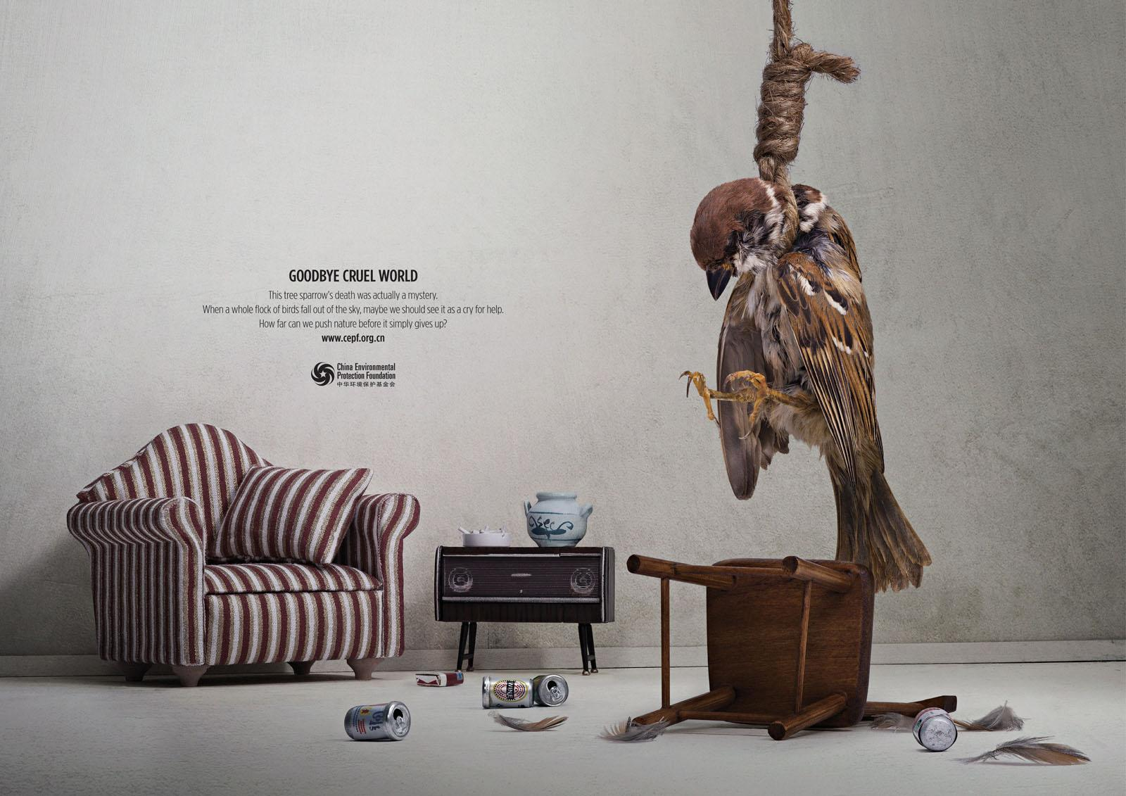 China Environmental Protection Foundation Print Ad -  Bird