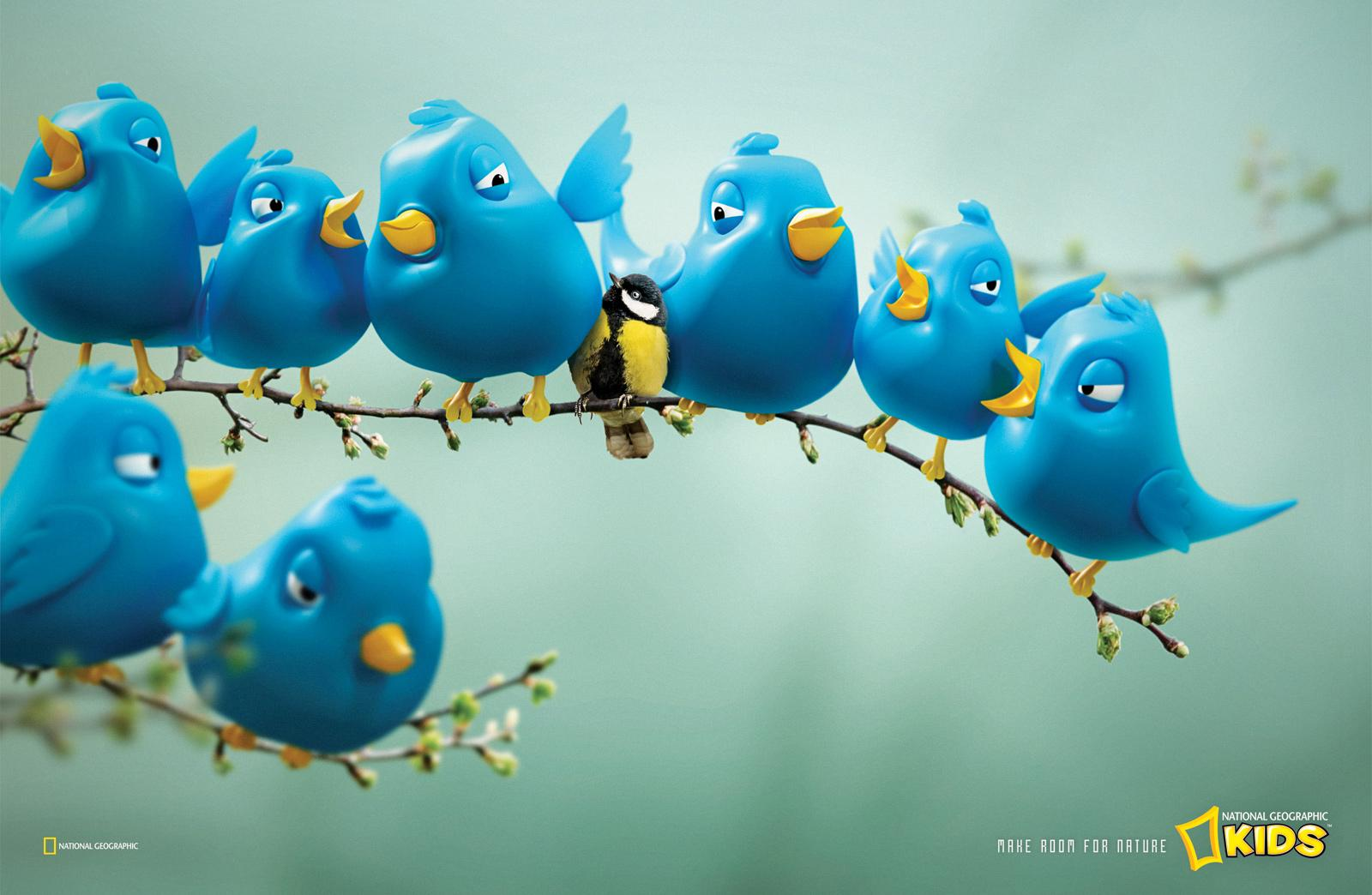 National Geographic Print Ad -  Twitter Birds