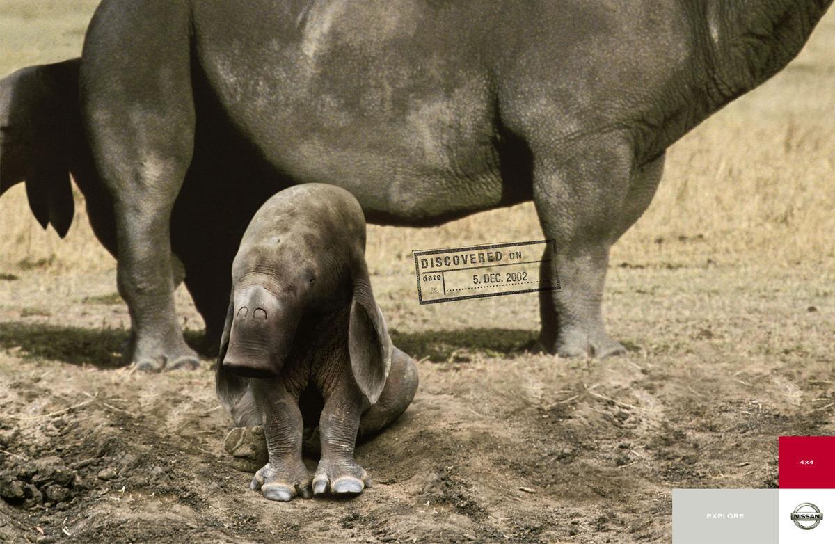 Explore, Elephant