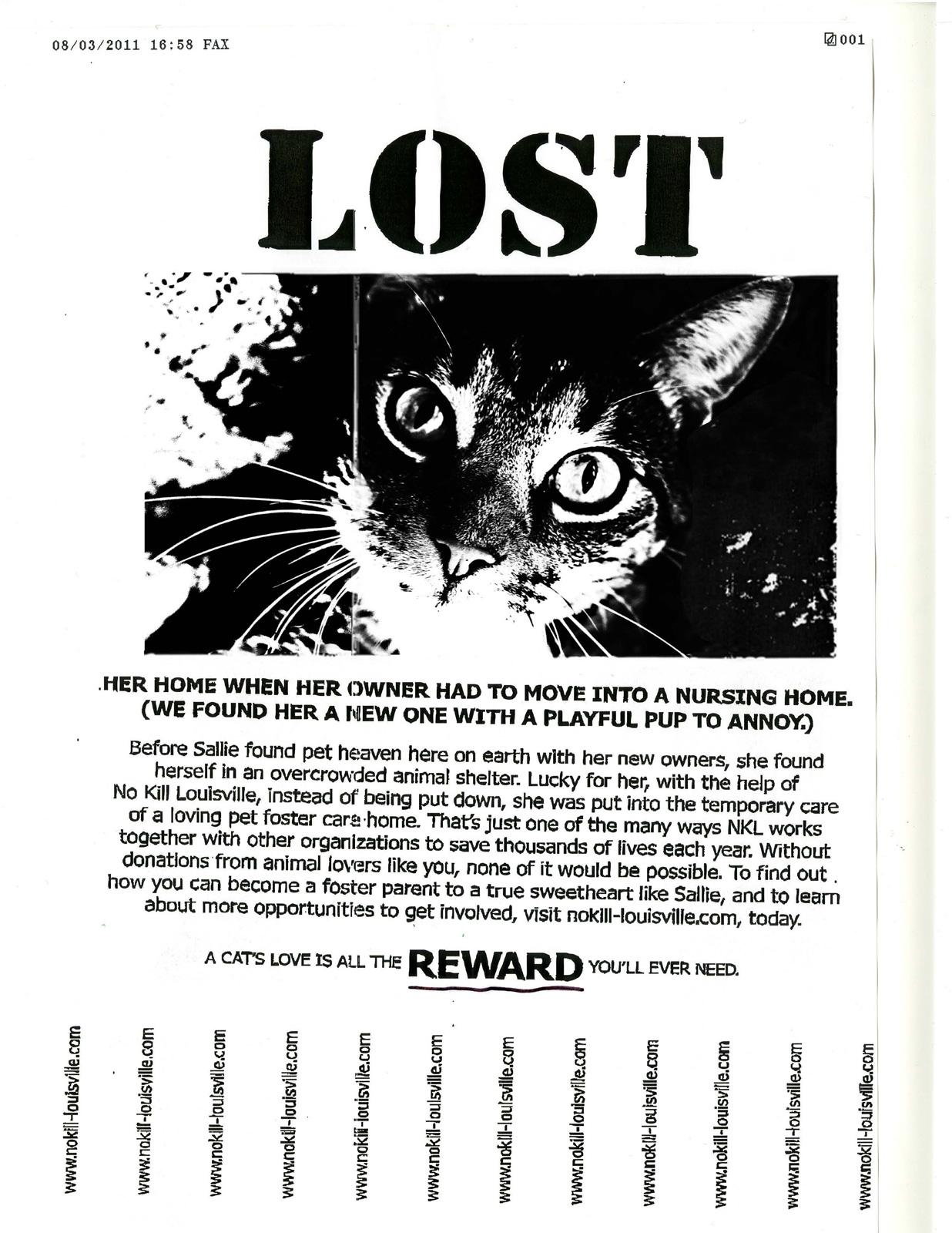 No Kill Louisville Print Ad -  Lost