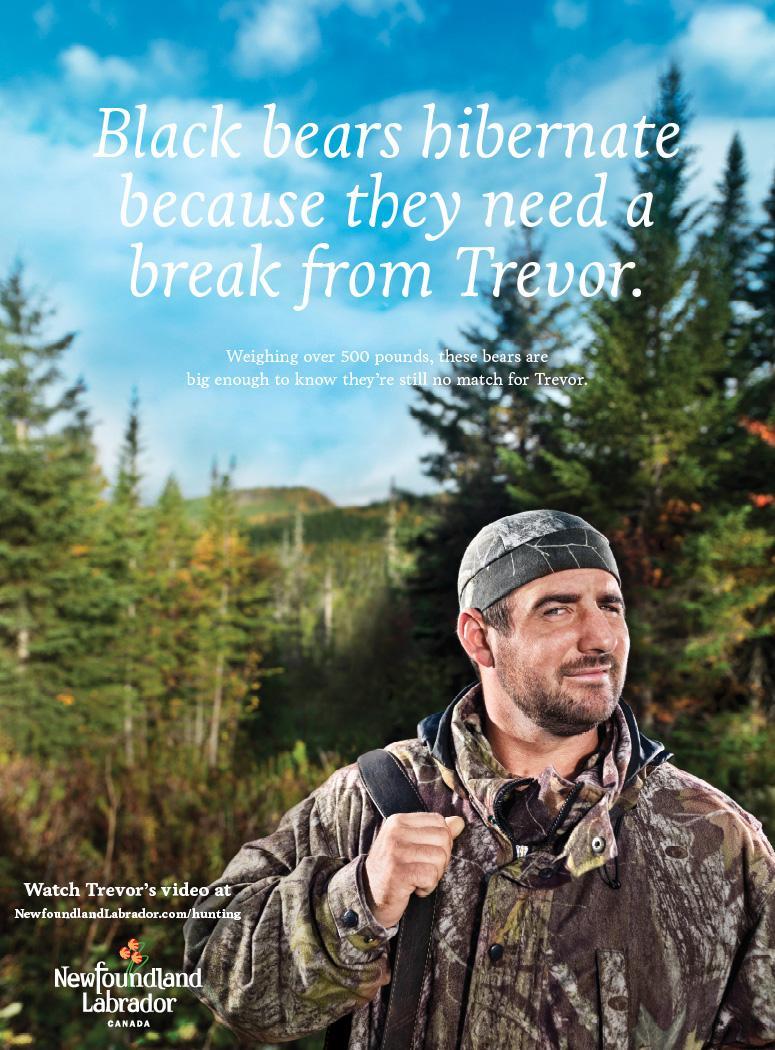 Newfoundland and Labrador Tourism Print Ad -  Bear