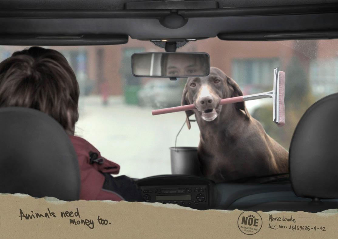 NOE Print Ad -  Carwash