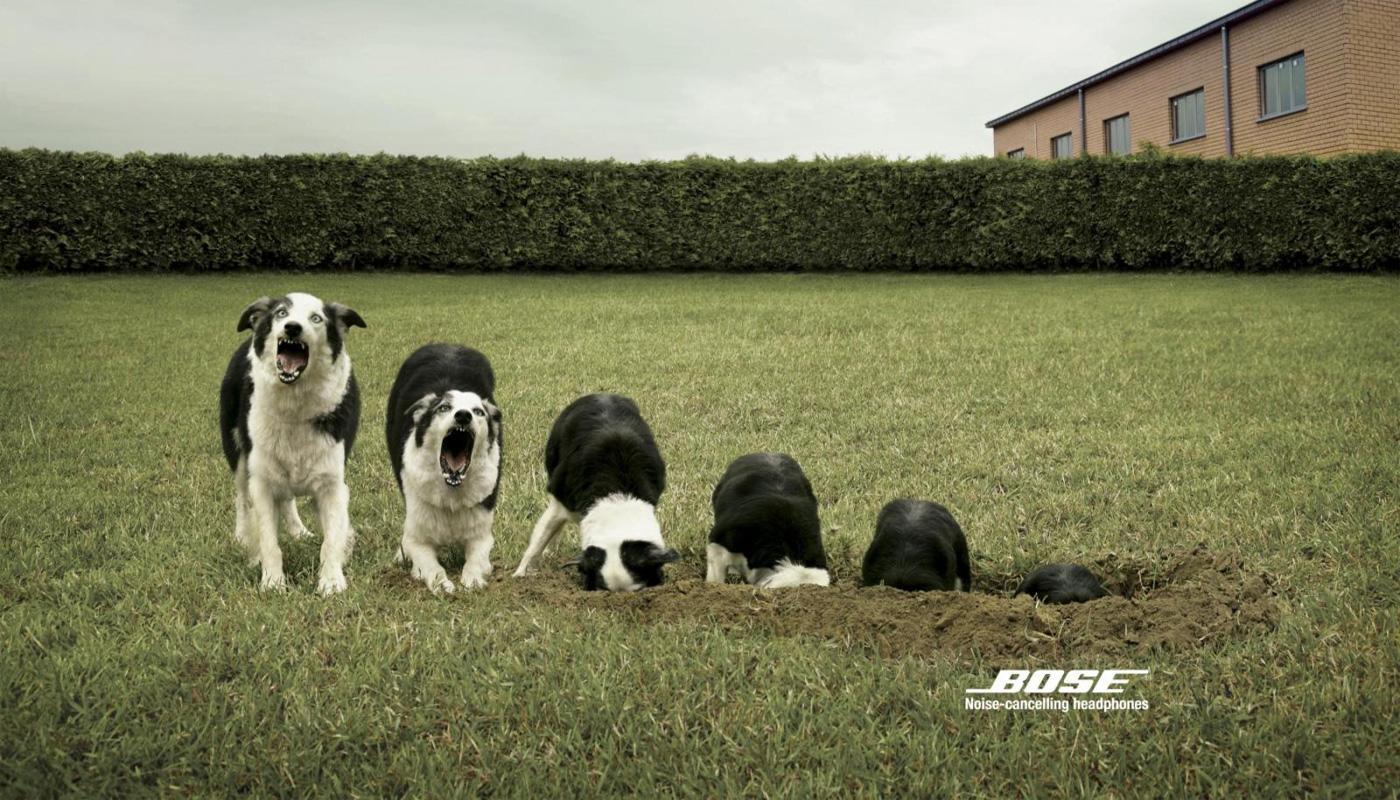 Bose Print Ad -  Dog