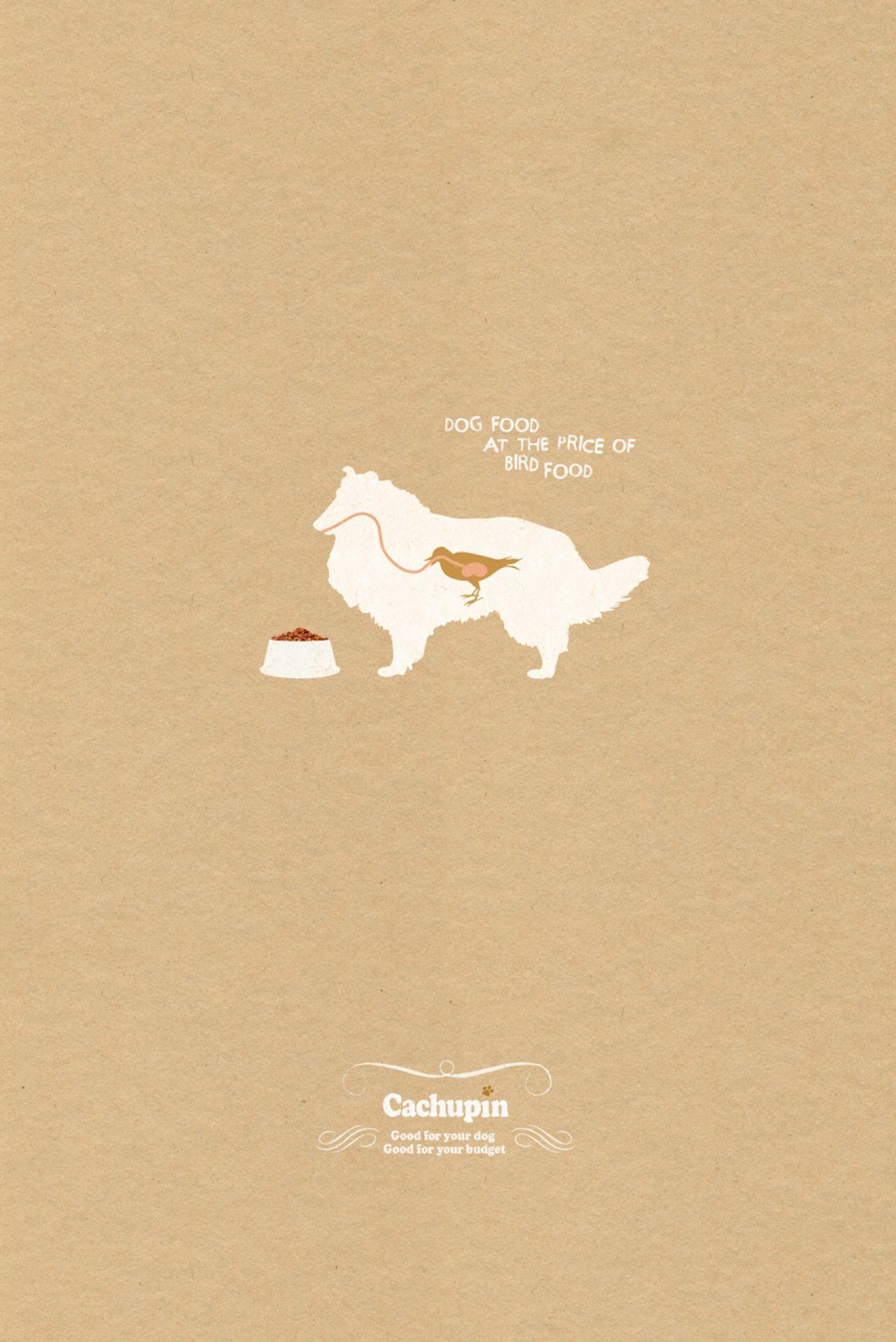 Cachupin Print Ad -  Bird