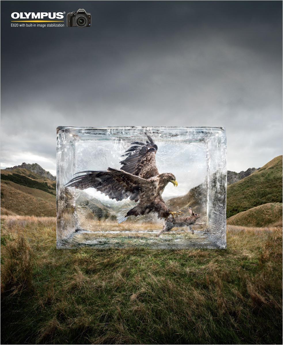 Olympus Outdoor Ad -  Eagle