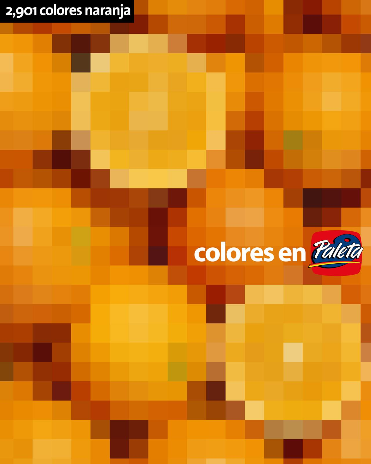 Paleta Print Ad -  Orange