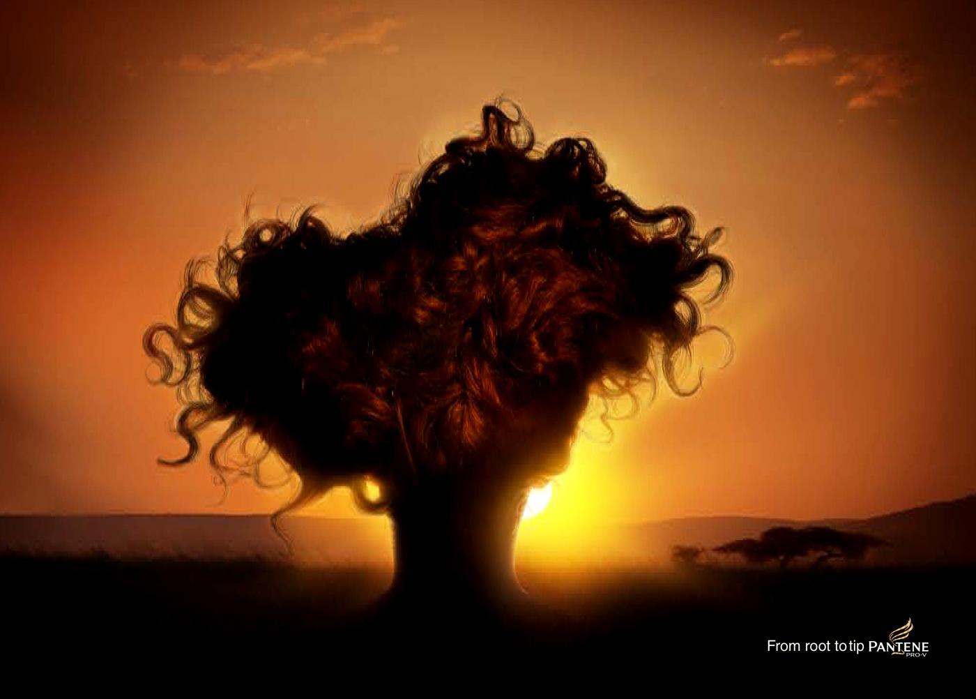 Pantene Print Ad -  Tree