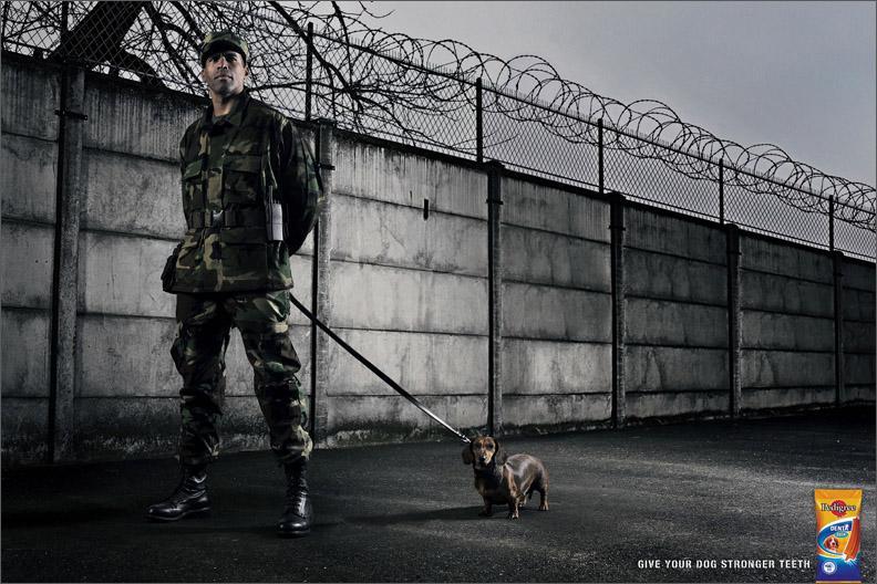 Guard, 1