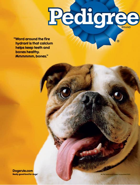 Is Pedigree Chum Good For Dogs