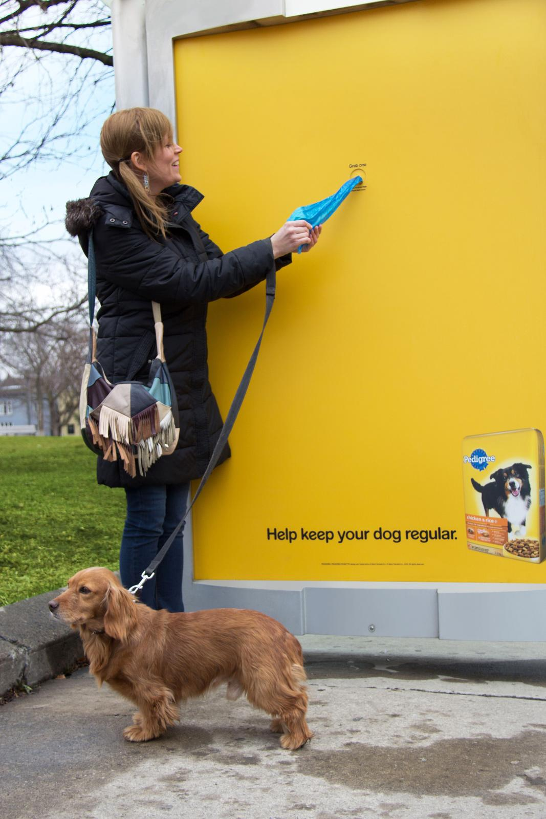 Pedigree Outdoor Ad -  Poop Bags Bus Shelter