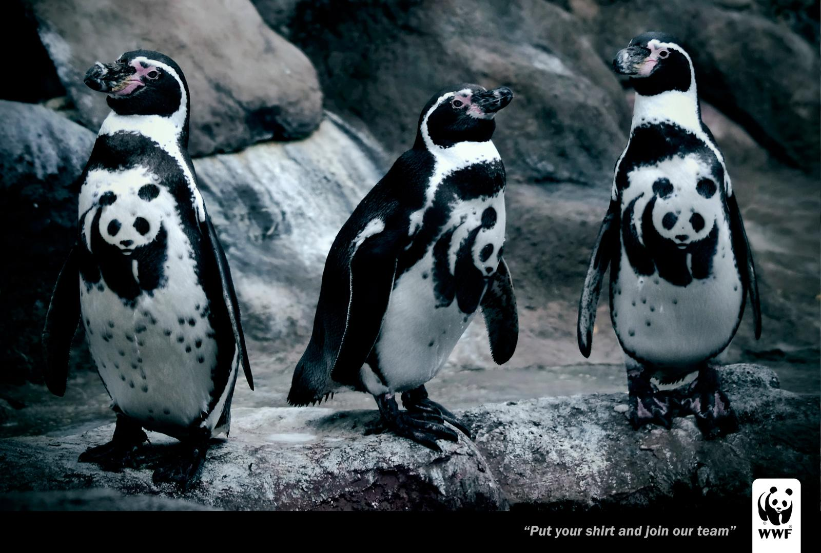 WWF Print Ad -  Penguin