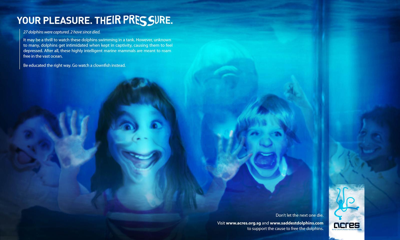 ACRES Print Ad -  Please Let The Dolphins Go