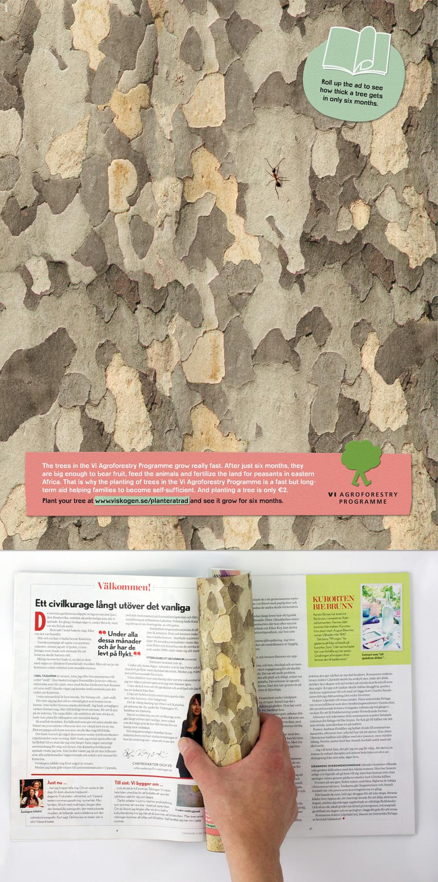 Vi Agroforestry Print Ad -  Tree stem