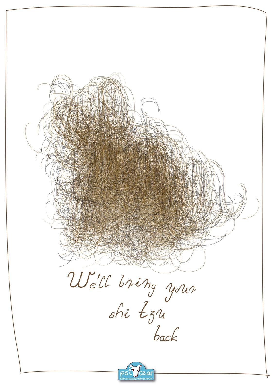 Psi Czar Dog Grooming Studio Print Ad -  Shi Tzu