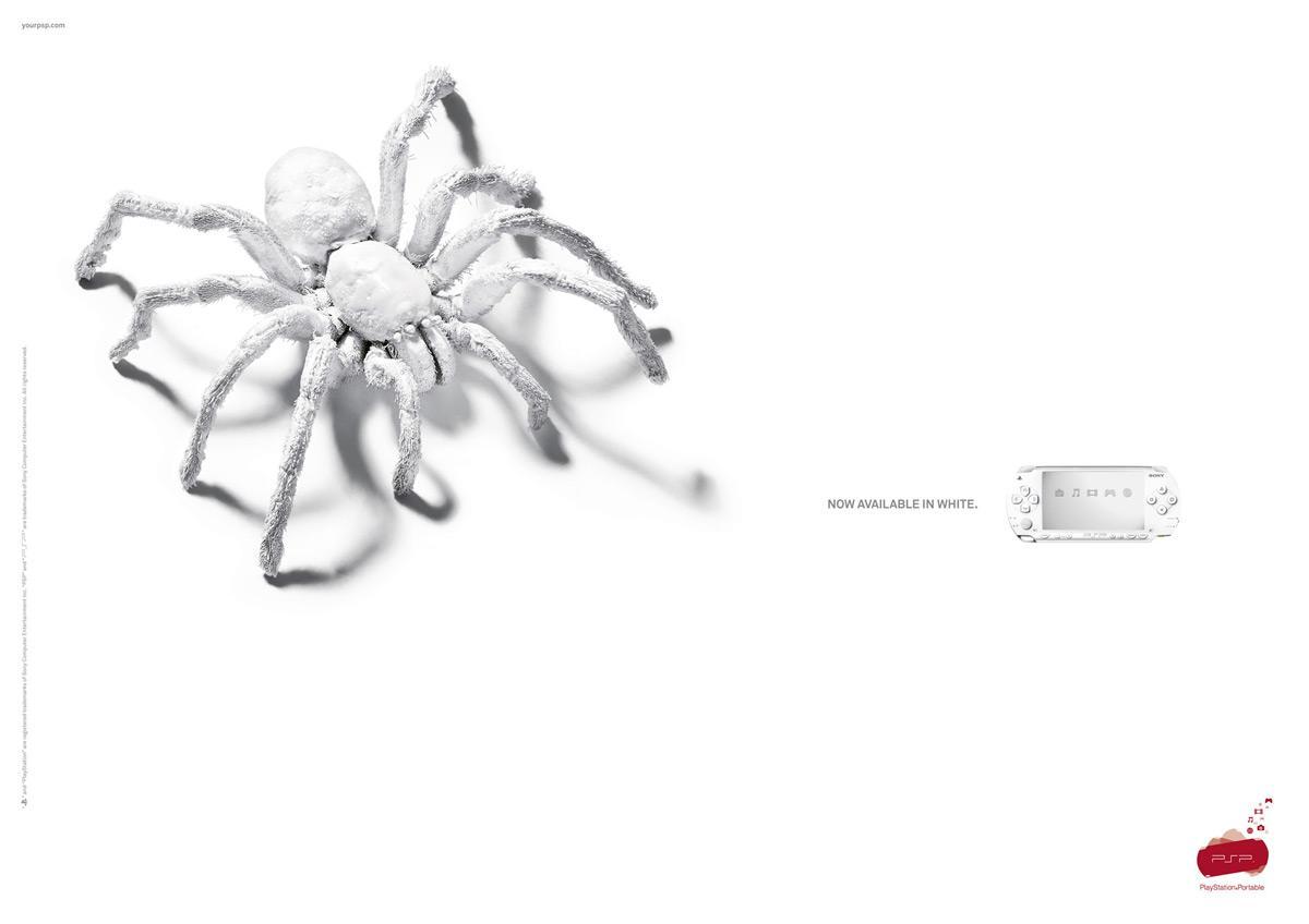 White tarantula