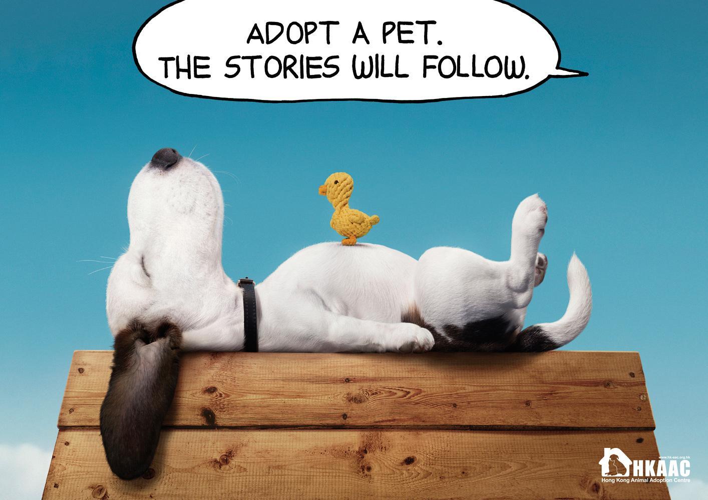 HKAAC Print Ad -  Puppy