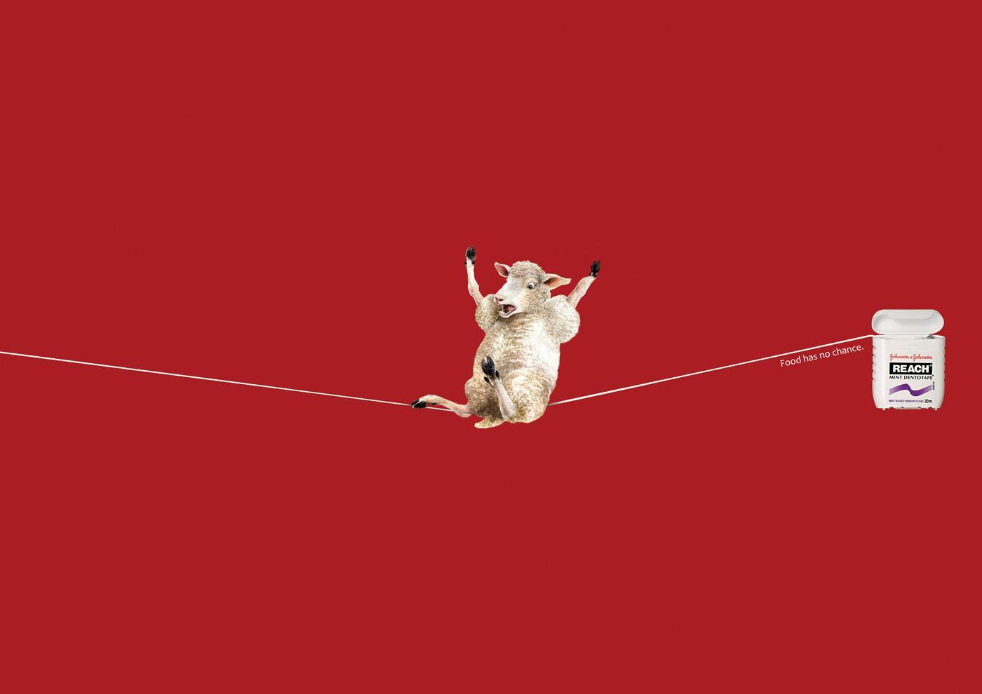Johnson & Johnson Print Ad -  Sheep