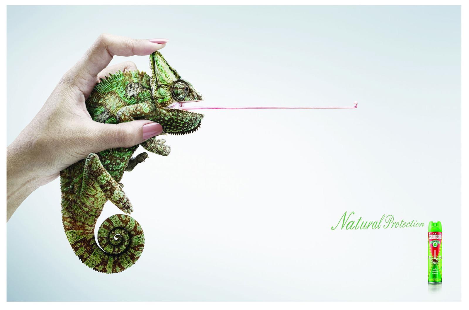 Shieldtox Print Ad -  Chameleon