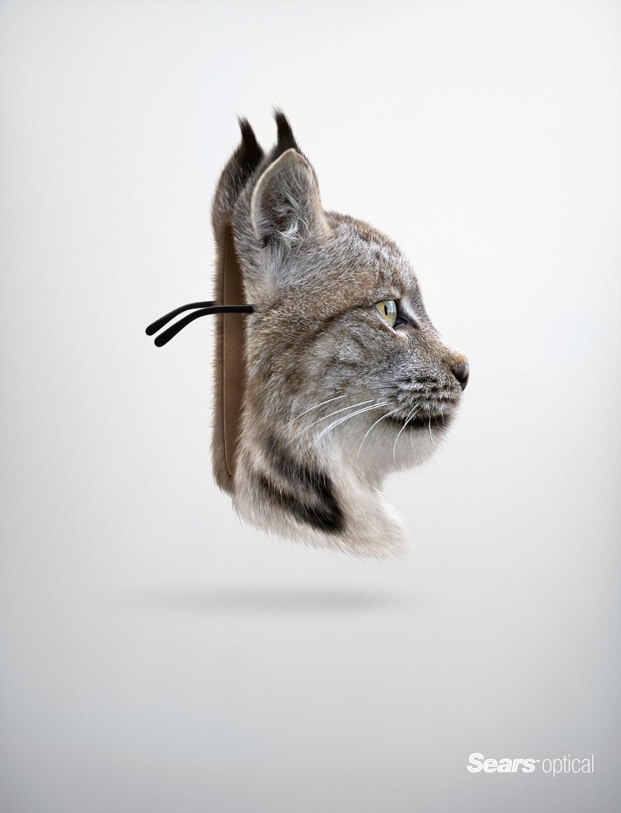 Sears Print Ad -  Lynx