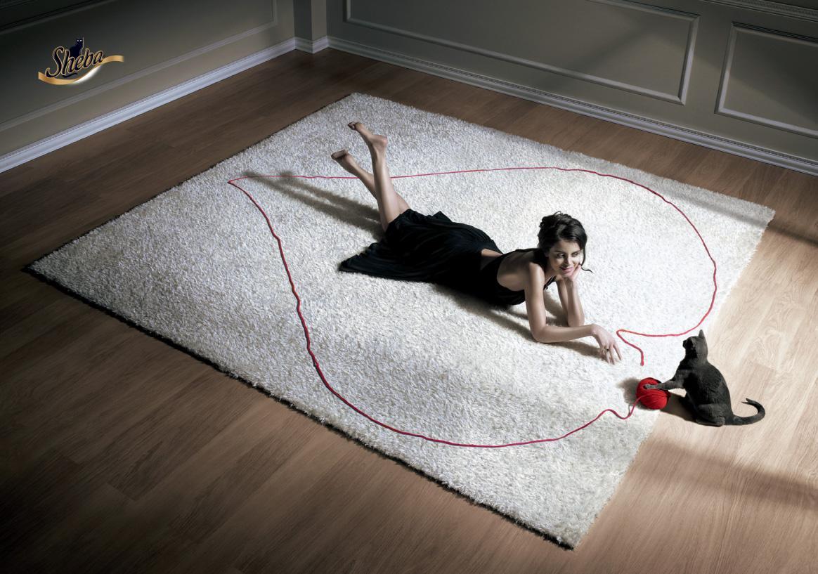 Sheba Print Ad -  Valentine