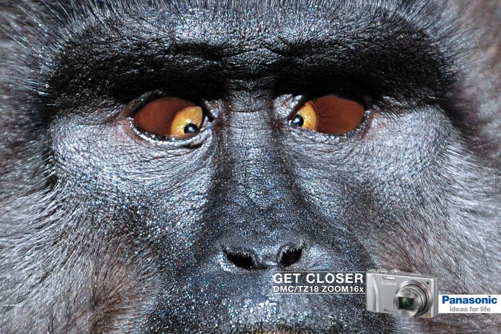 Panasonic Print Ad -  Monkey
