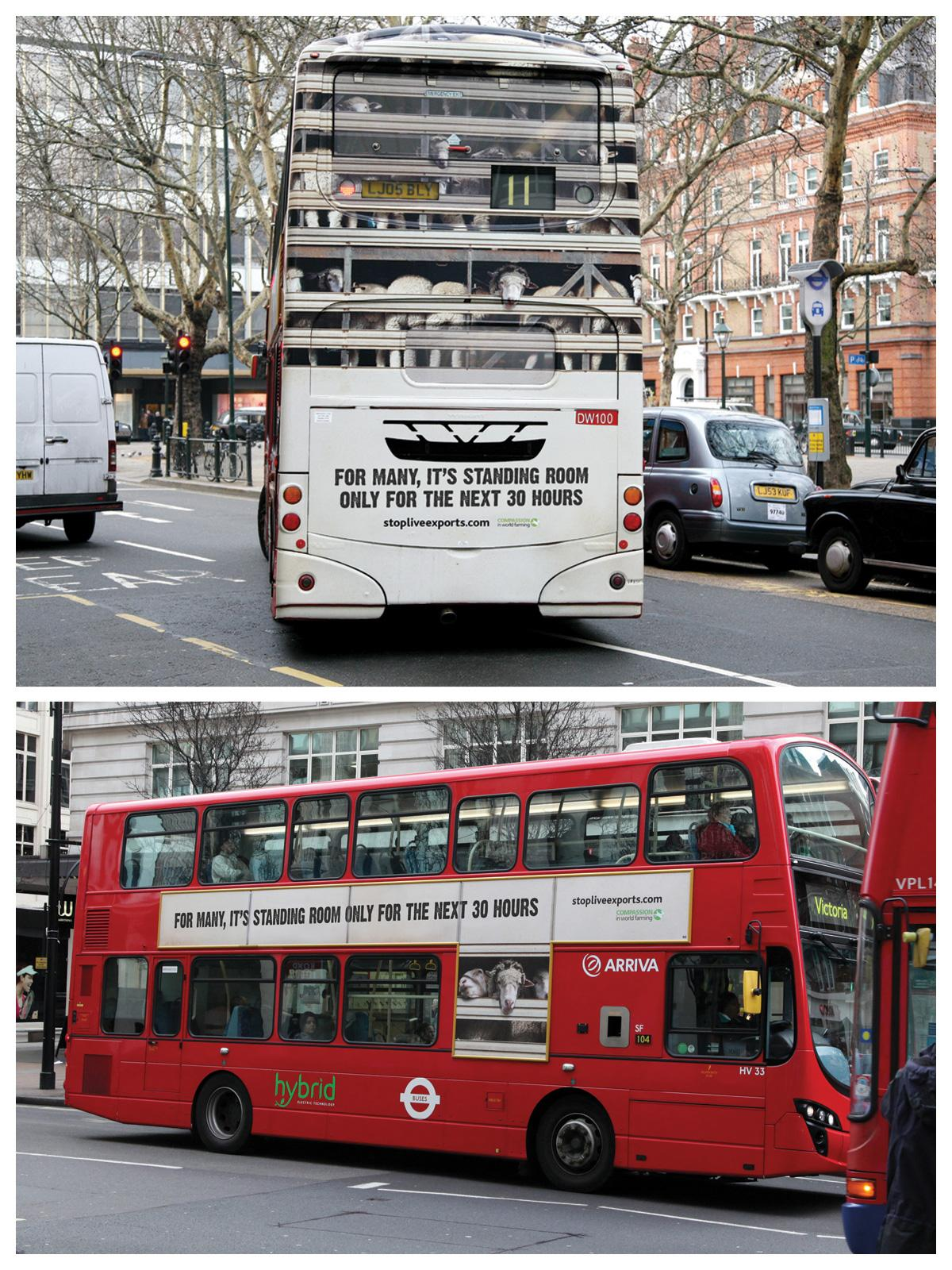 Compassion In World Farming Outdoor Ad -  Stop Live Exports, 2
