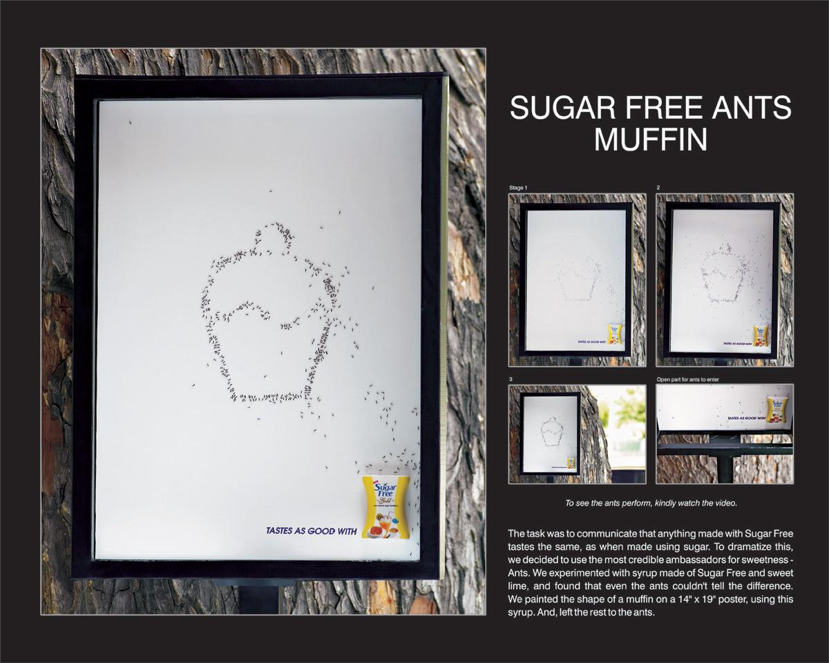 Ants, Muffin