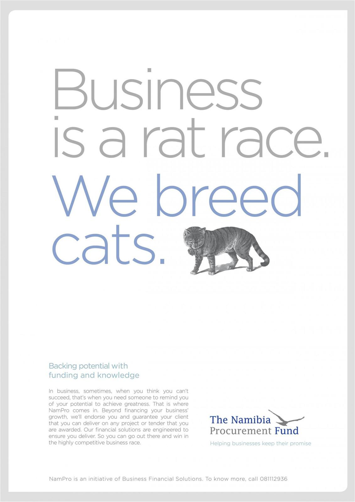 The Namibia Procurement Fund Print Ad -  Cat