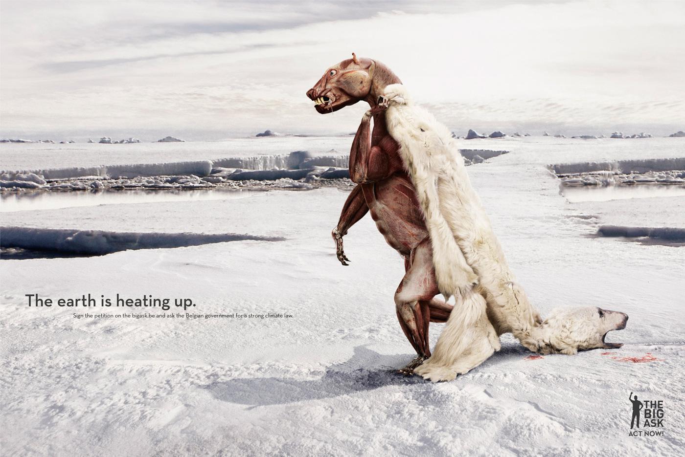 Friends of the Earth Print Ad -  Polar bear