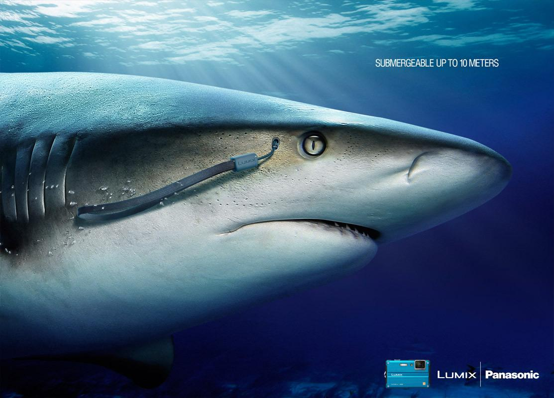 Panasonic Print Ad -  Shark