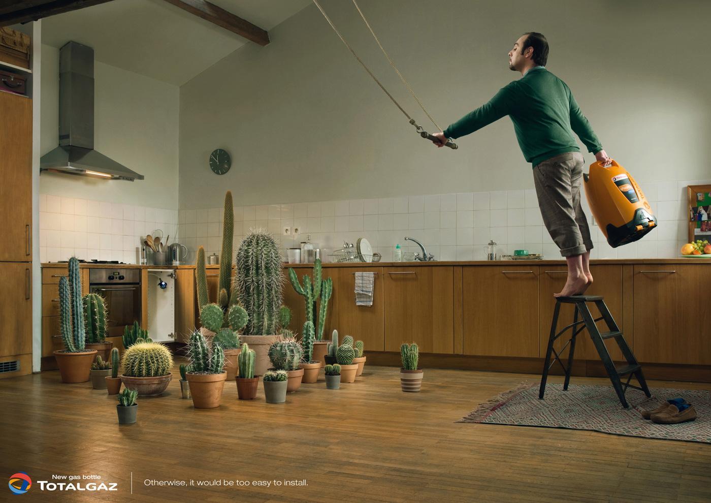 Totalgaz Print Ad -  Cactus