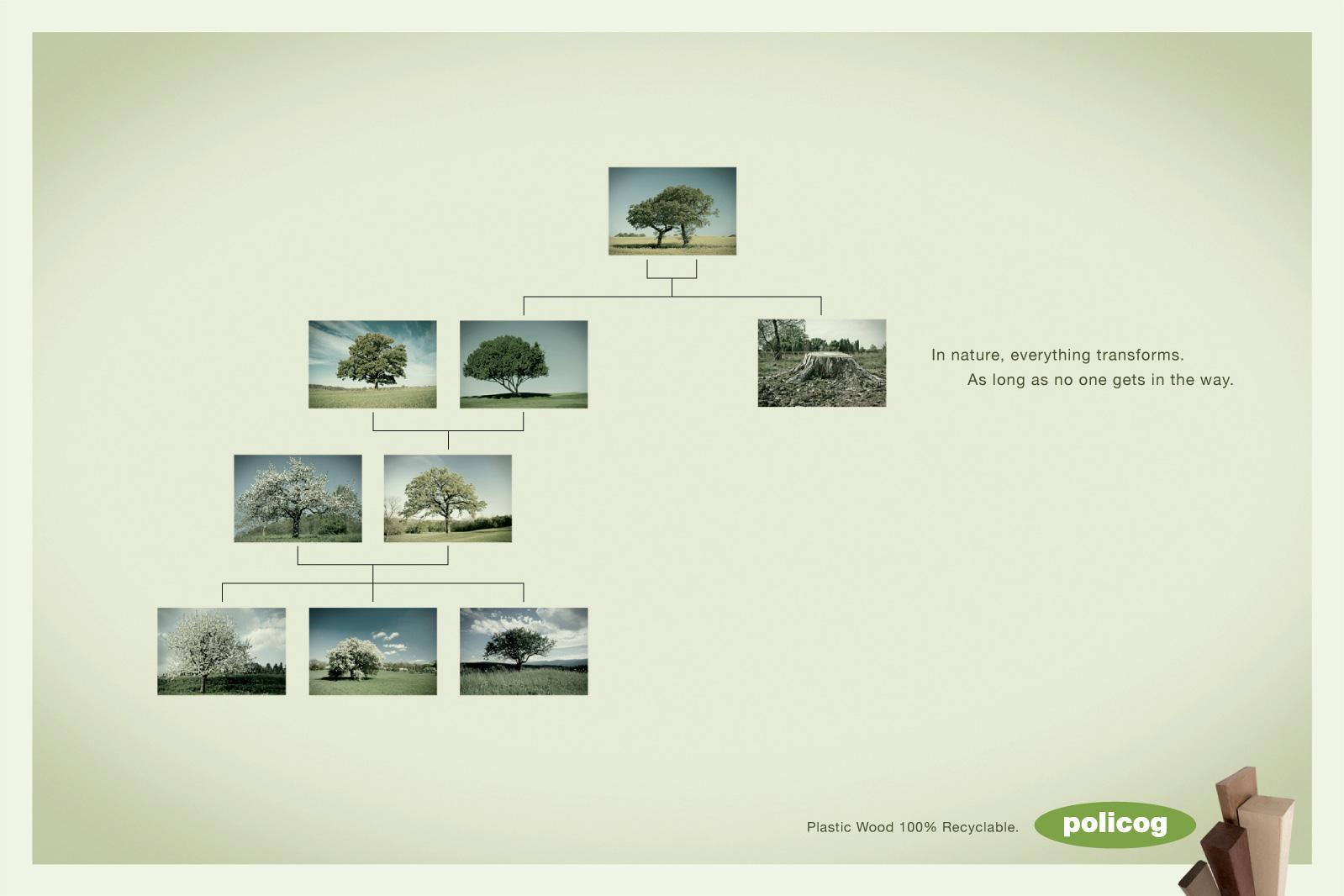 Policog Print Ad -  Tree