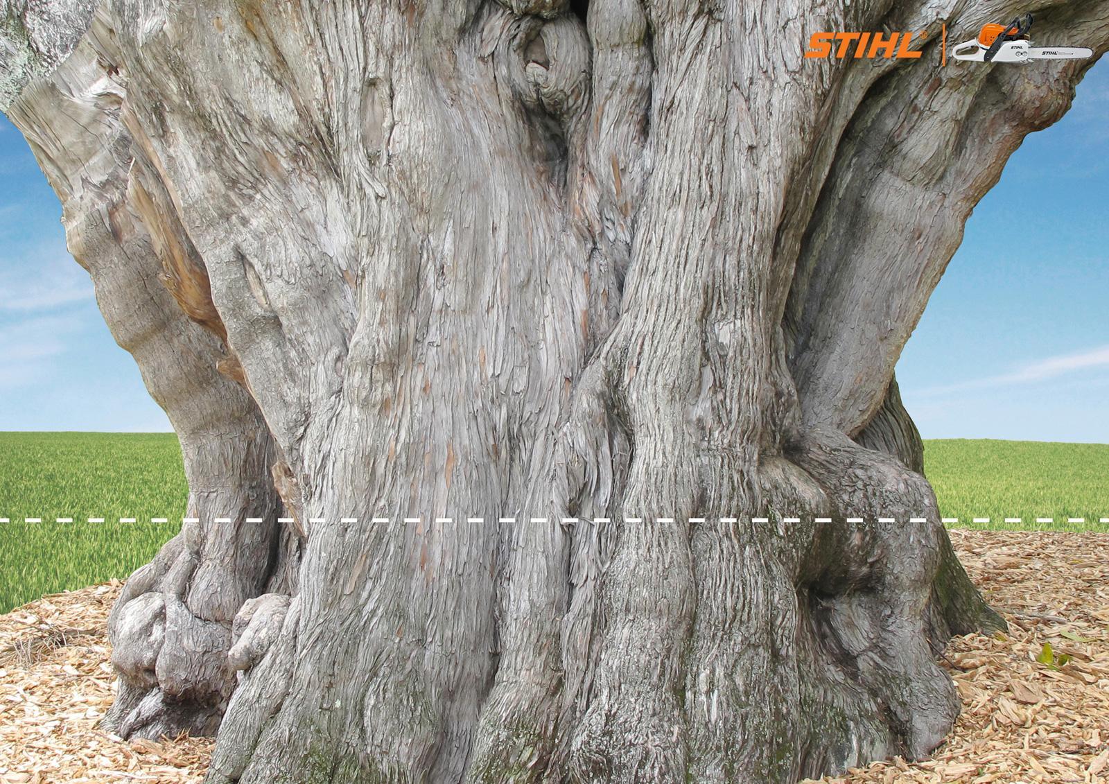 Stihl Print Ad -  Tree
