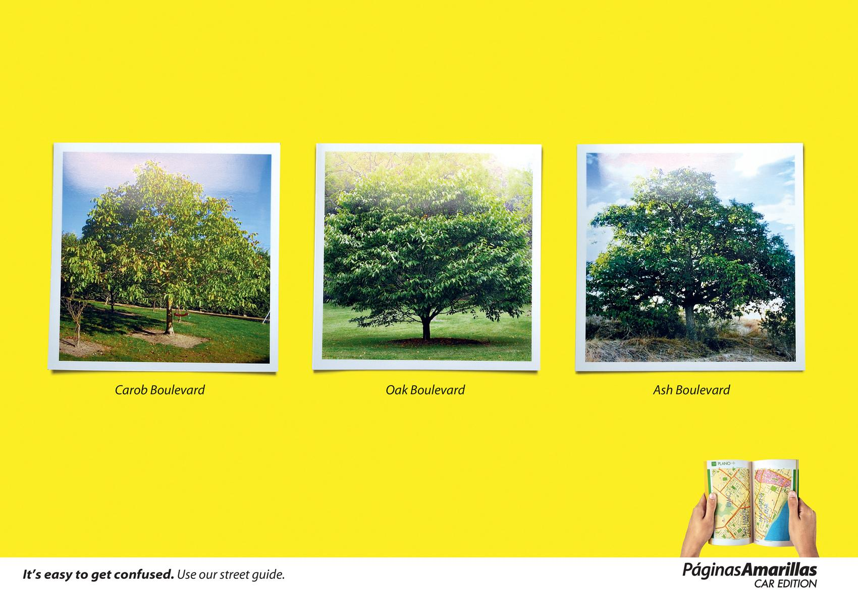 Yellow Pages Print Ad -  Trees