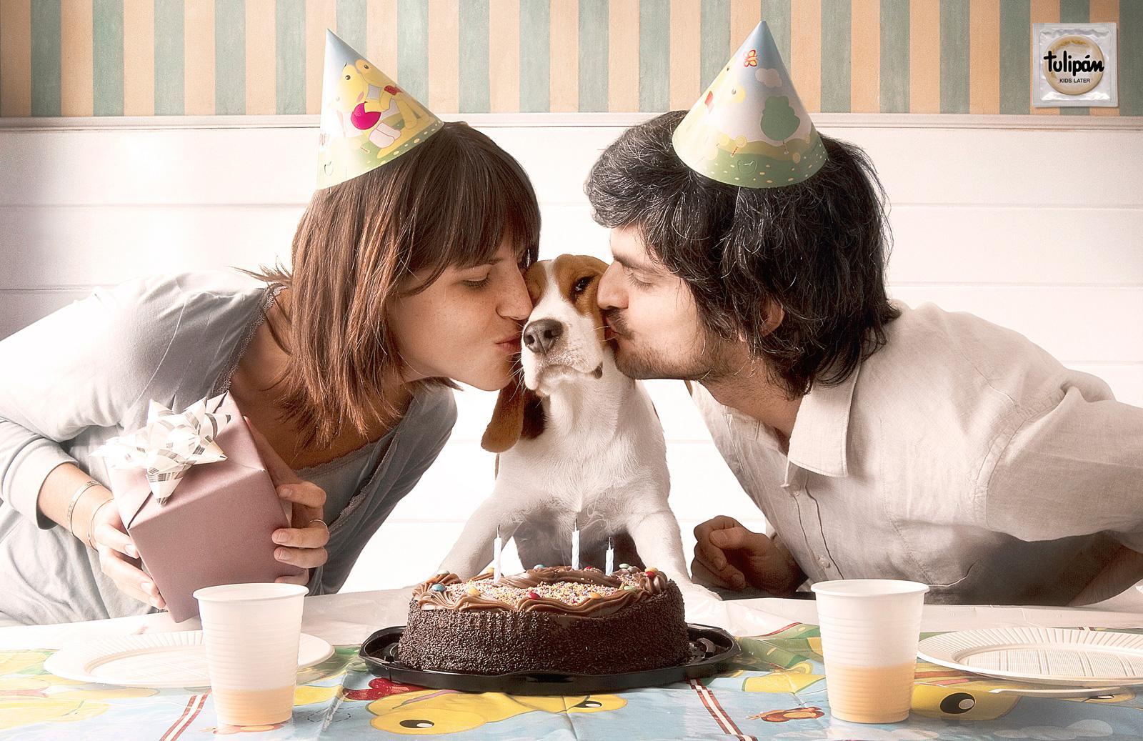 Tulipan Print Ad -  Puppies, Birthday