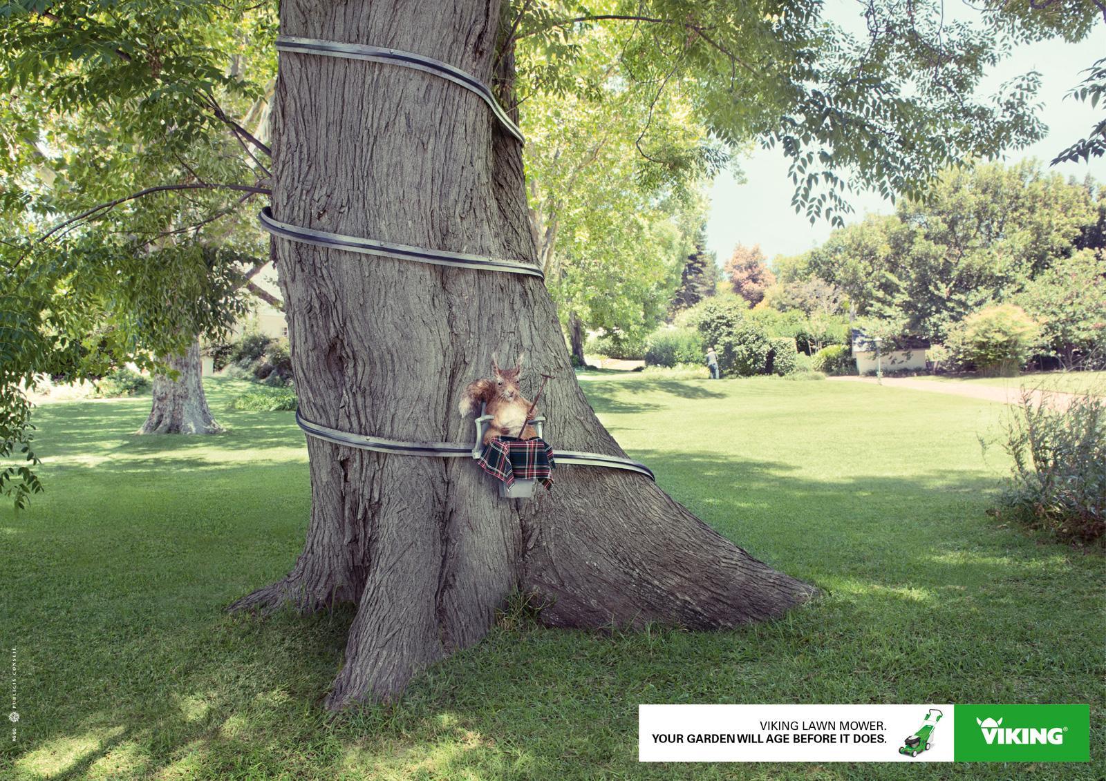 Viking Print Ad -  Squirrel