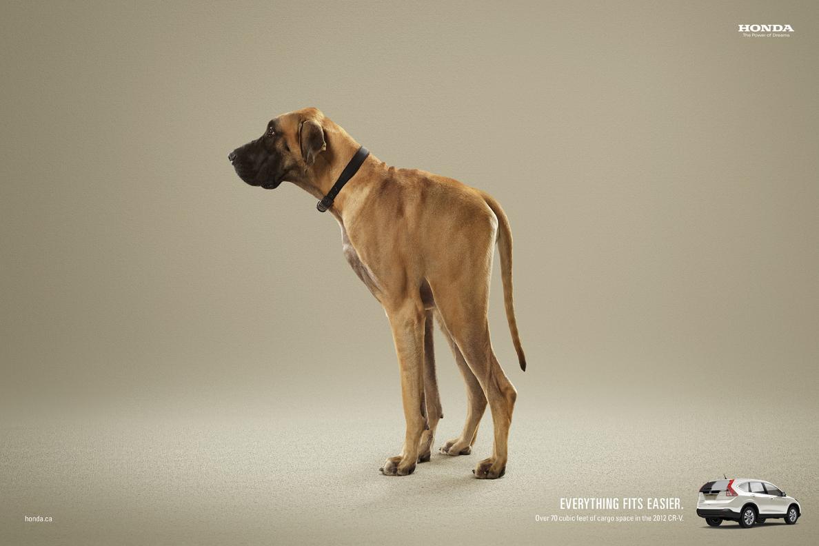 Honda Print Ad -  Dog