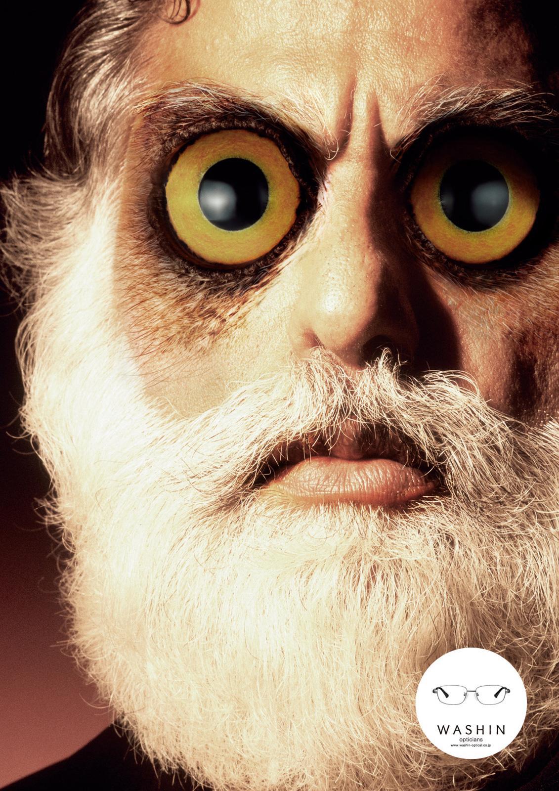 Washin Optical Print Ad -  Owl
