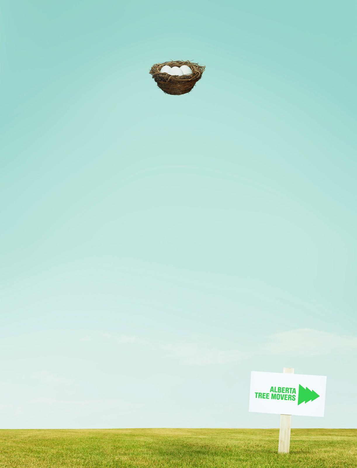 Alberta Tree Movers Print Ad -  Nest