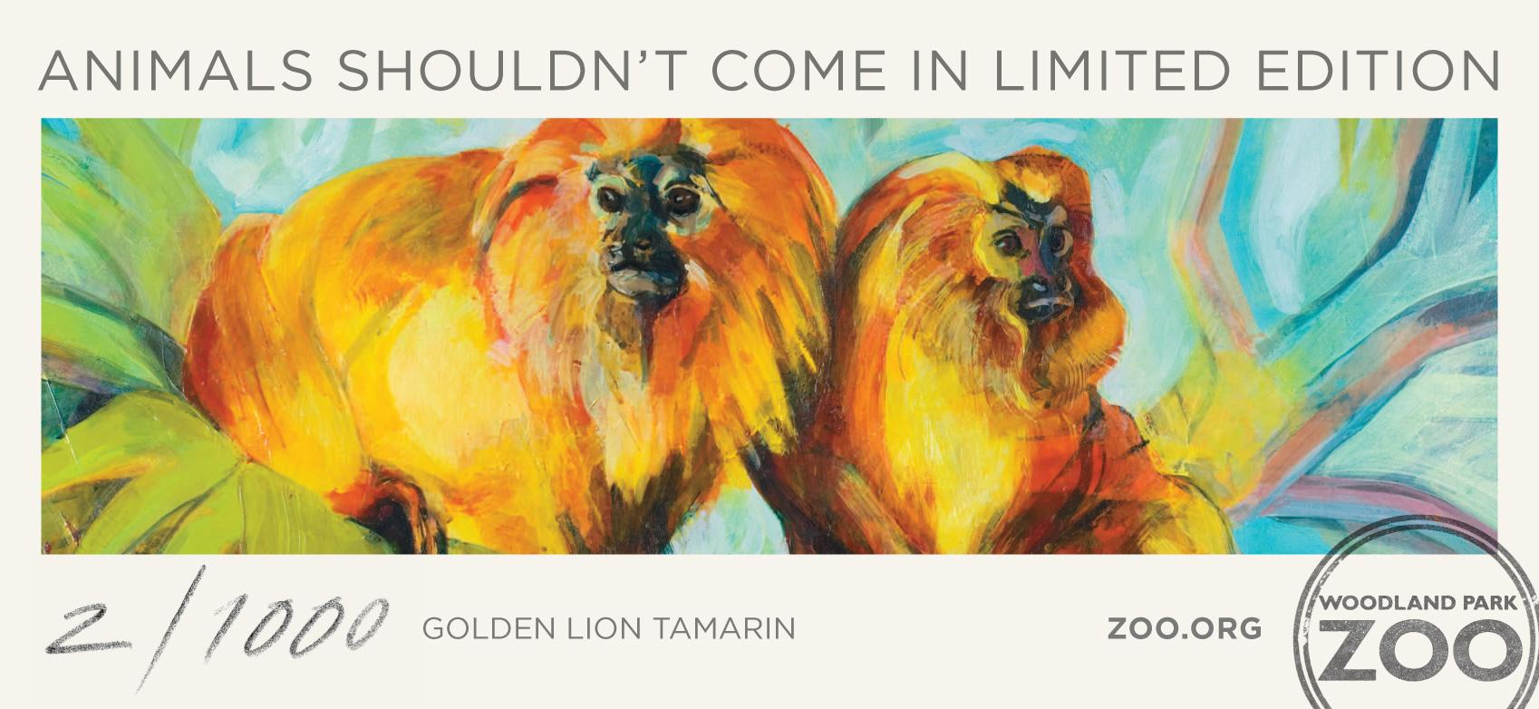 Woodland Park Zoo Print Ad -  Golden Lion Tamarin