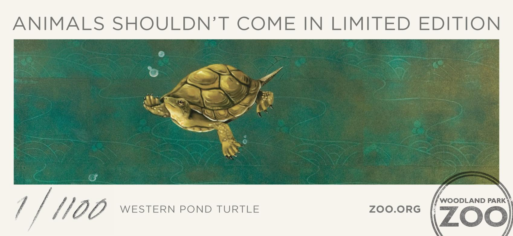 Woodland Park Zoo Print Ad -  Western Pond Turtle
