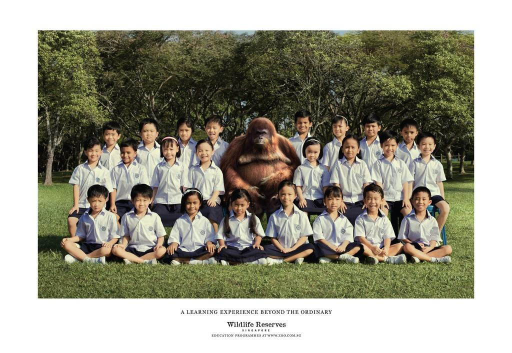 Wildlife Reserves Singapore Print Ad -  Teacher