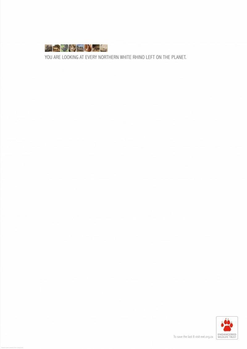Endangered Wildlife Trust Print Ad -  Northern White Rhino