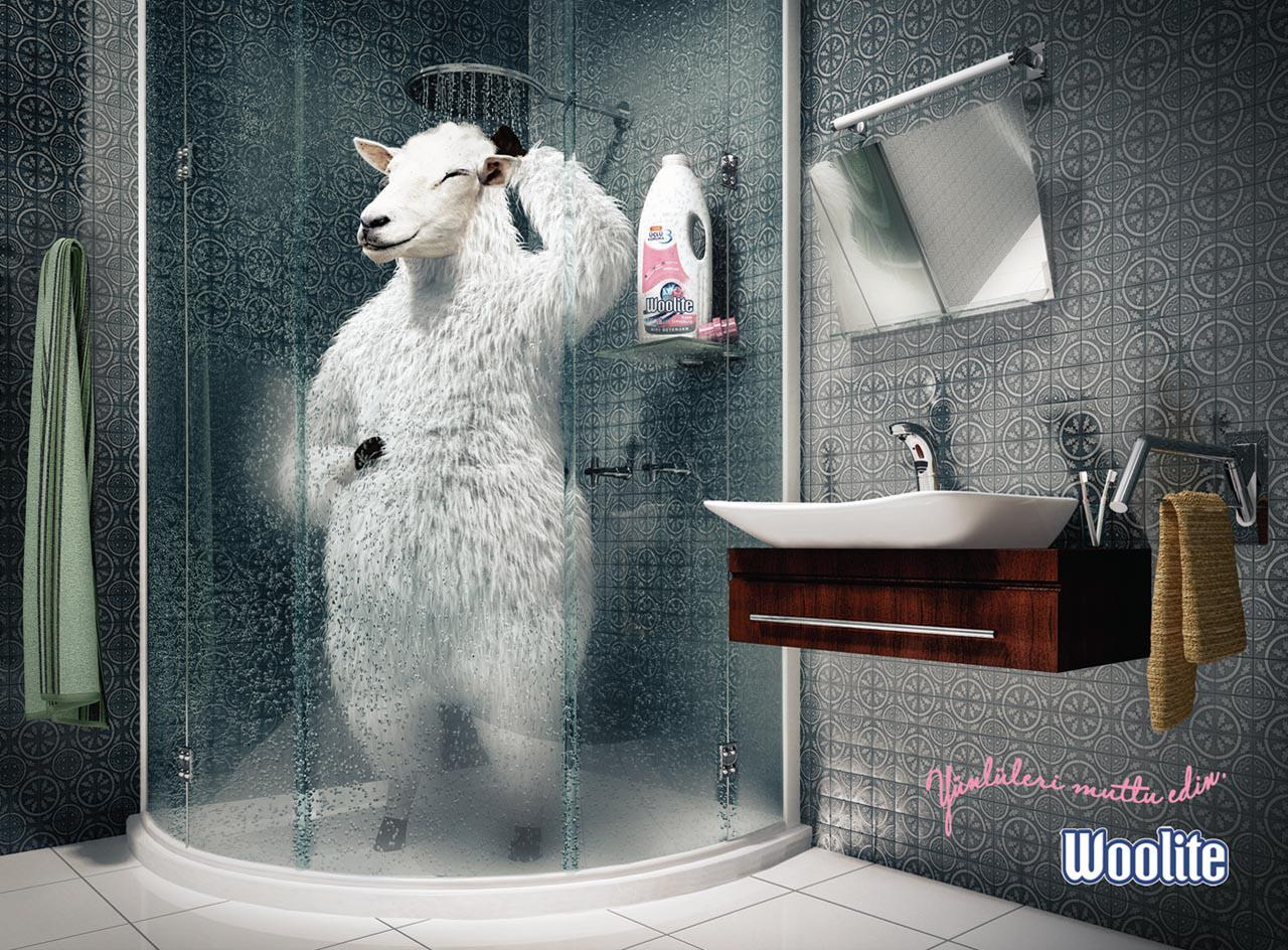 Woolite Print Ad -  Sheep