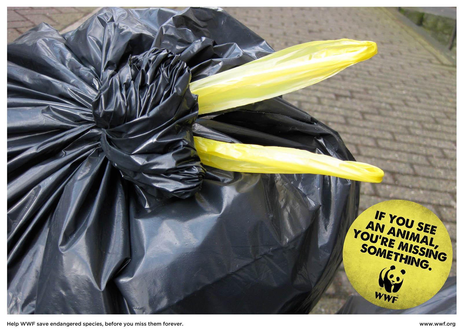 WWF Print Ad -  Pelican