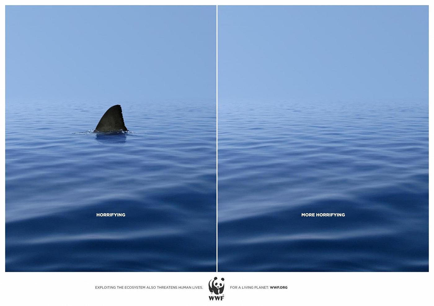 WWF Print Ad -  Shark