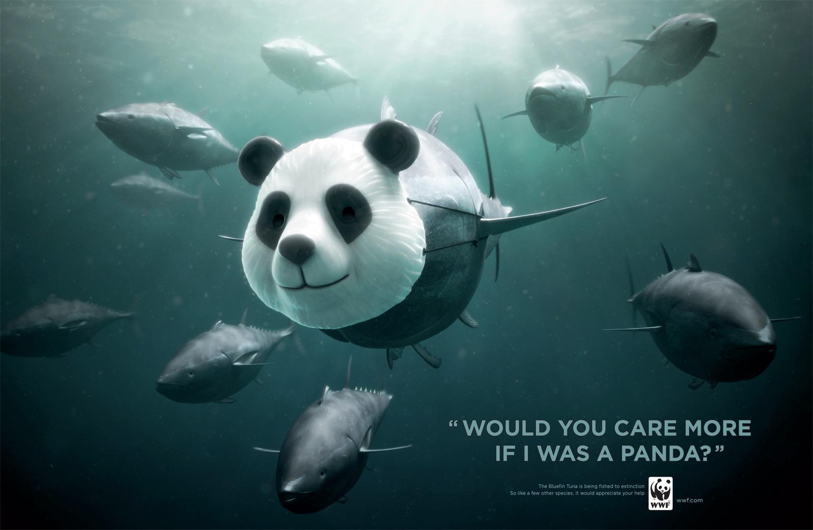 WWF Print Ad -  Panda