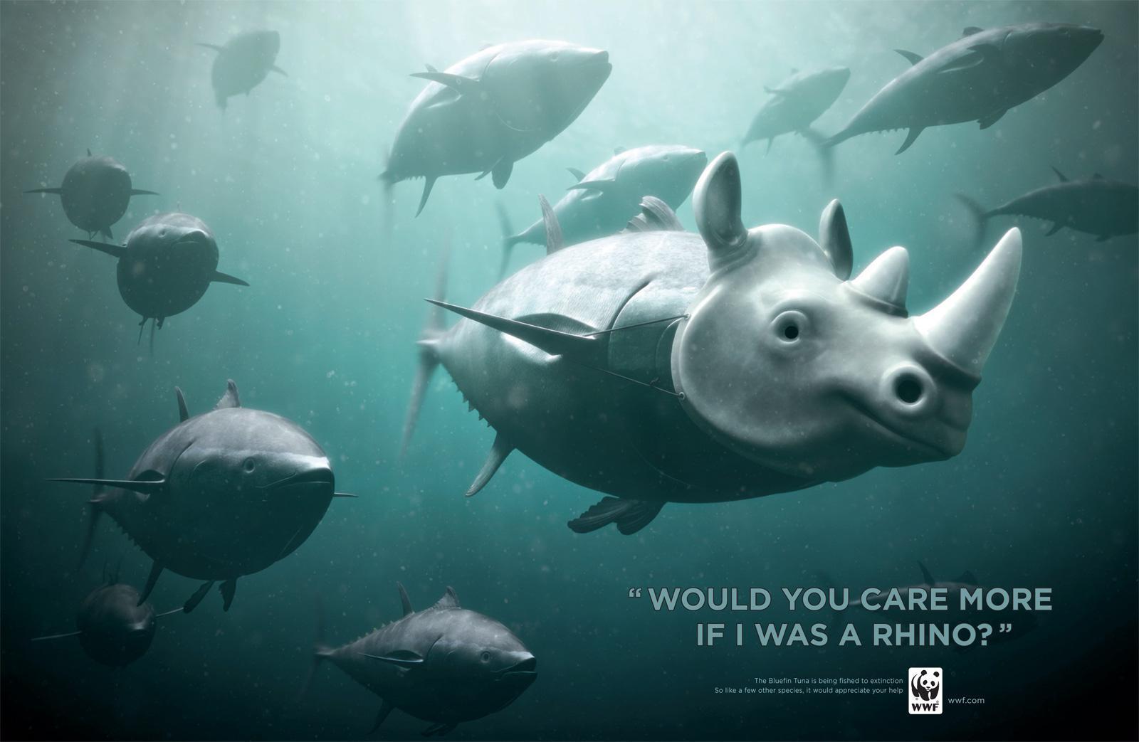 WWF Print Ad -  Rhino