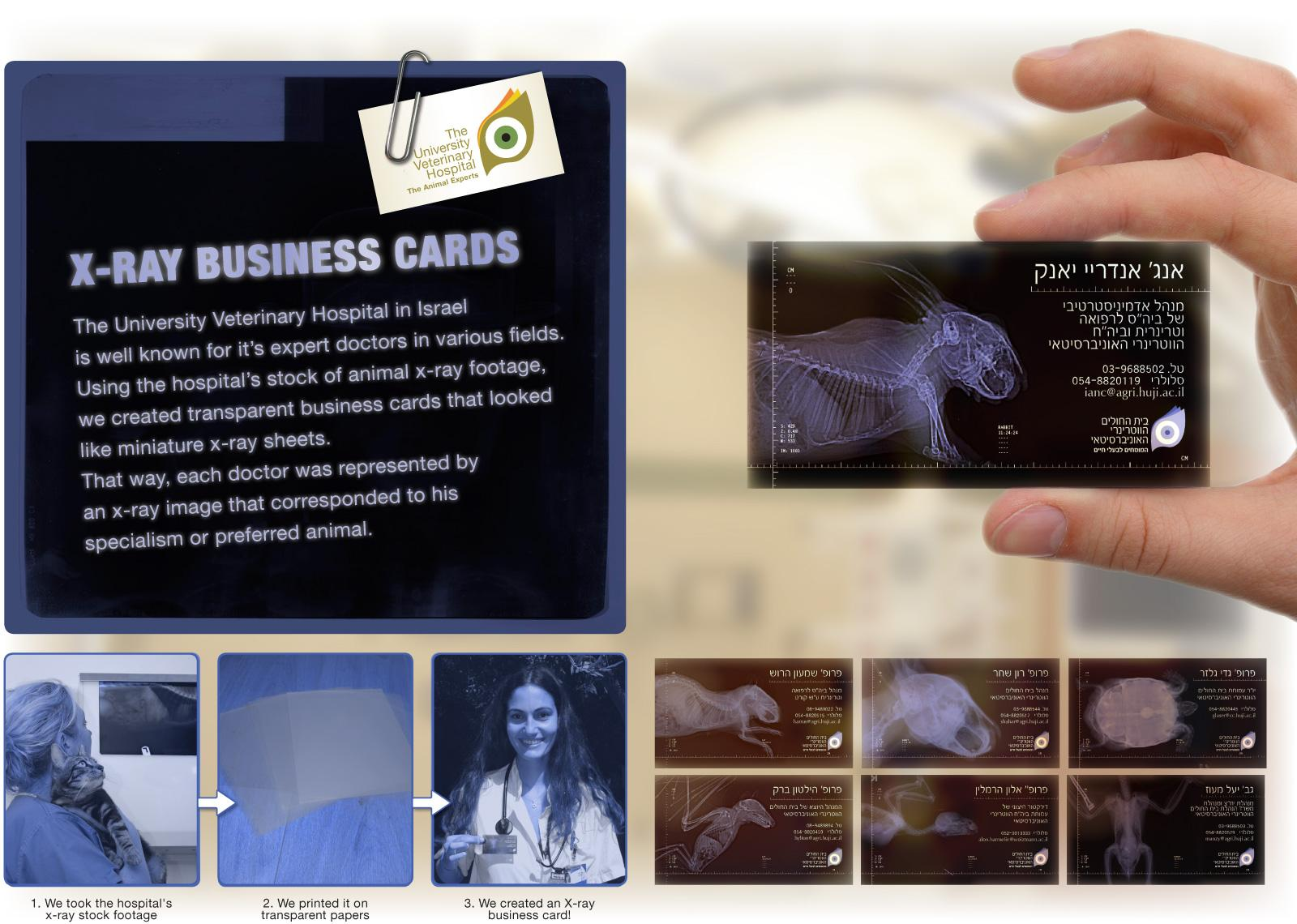 University Veterinary Hospital Direct Ad -  X-Ray Business Card