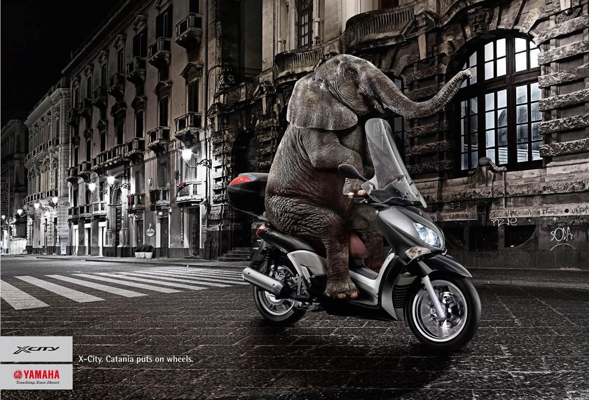 Yamaha Print Ad -  Elephant